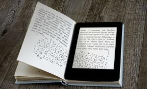 ebook-libri-di-carta-seconda-ridotta